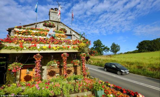 A House Covered With Flowers
