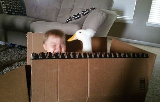 Pet Duck Protects This Little Boy