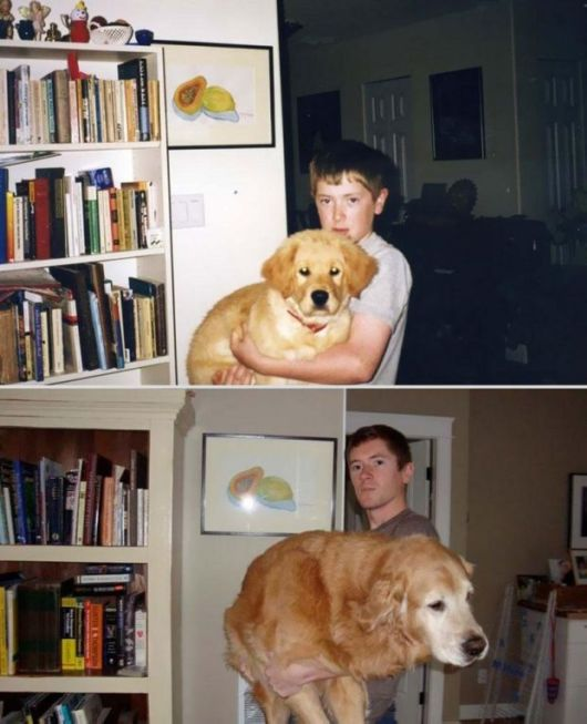 Pictures Showing Pleasing Journey Of Pets Growing Up