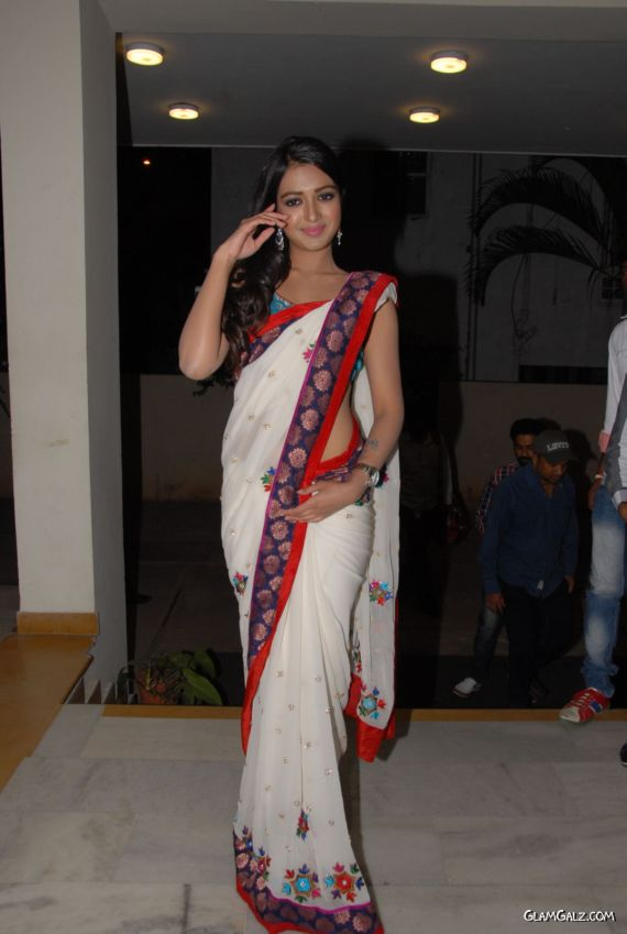 Katherine Theresa Looking Gorgeous In Saree
